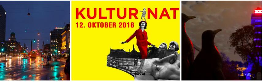 Kulturnatten: Culture Night