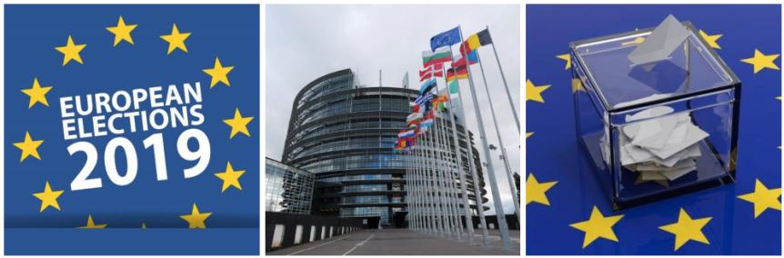 The 2019 European ParliamentElection